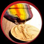 media-award2